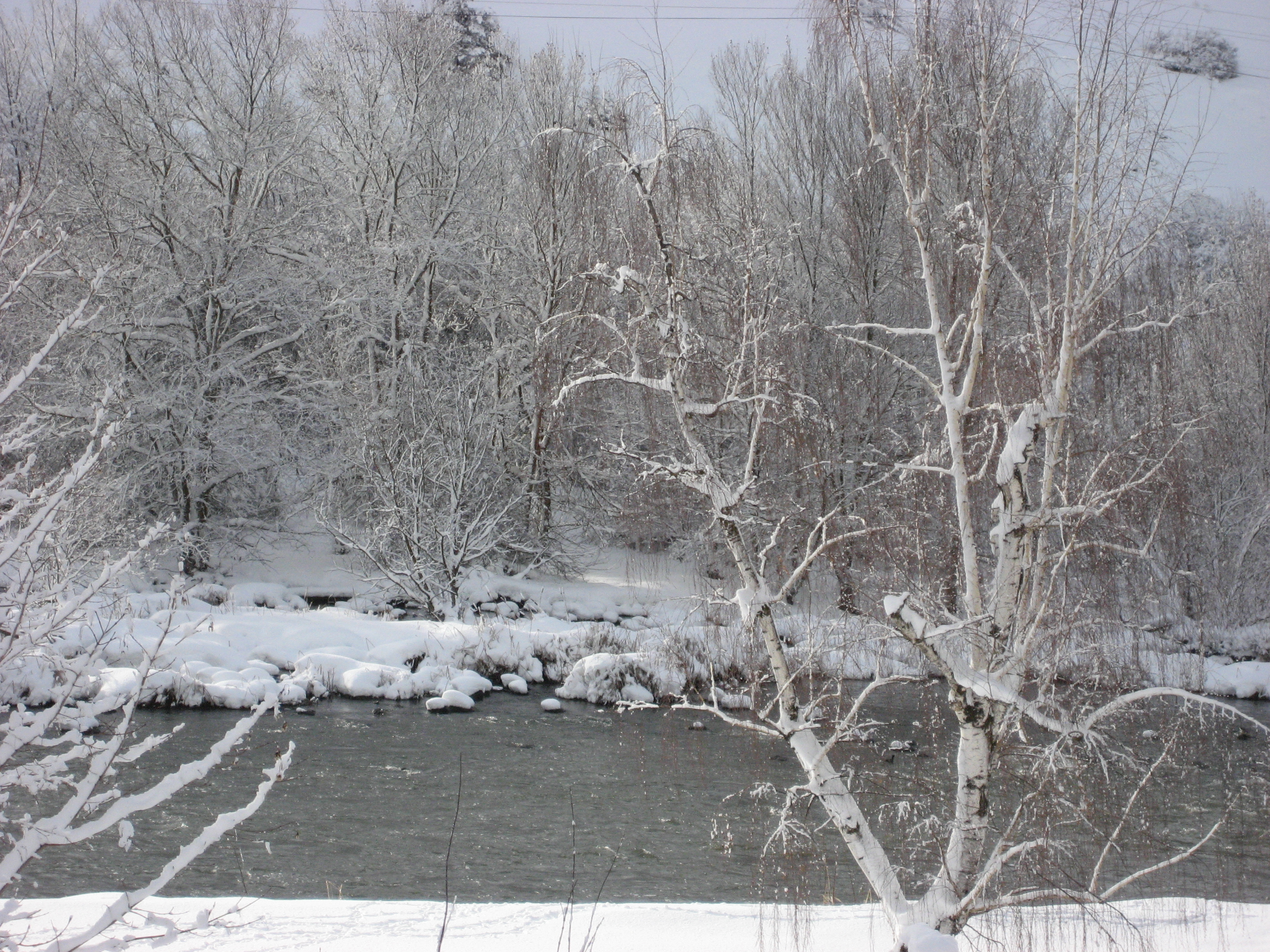 Winter Link River